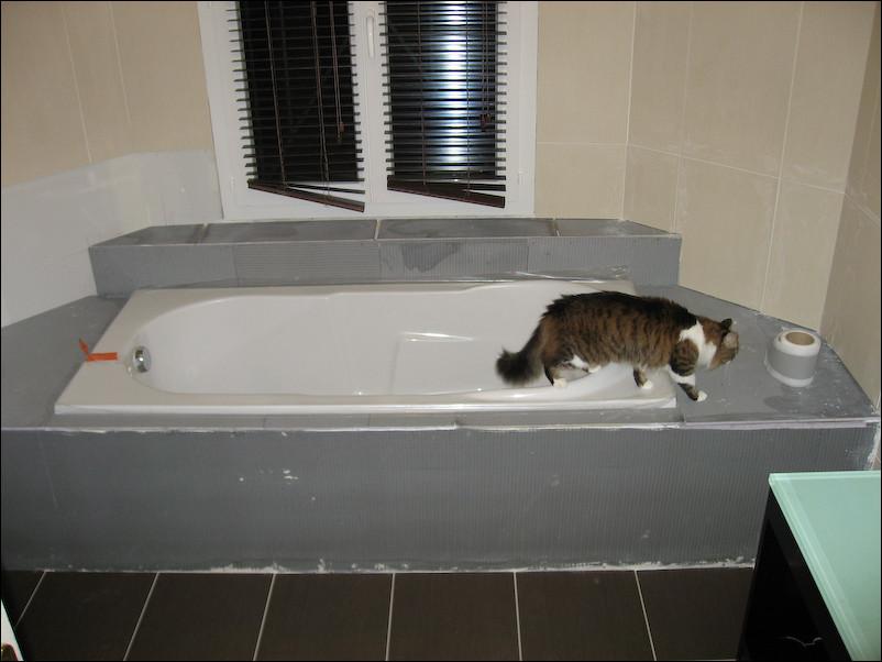 la salle de bain de a z avec toutes ses volutions. Black Bedroom Furniture Sets. Home Design Ideas